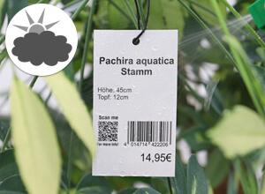 Bestellen Sie Etiketten für Wind und Wetter